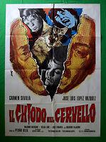 M32 Manifesto 2F Die Nail IN Gehirne Sevilla Vazquez Pedro Olea Thriller
