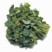 BROCCOLI RAAB SEED, RAPINI, HEIRLOOM, ORGANIC, 100 SEEDS, NON GMO, VEGETABLE