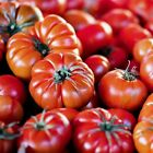 Beefsteak OP Tomato Seed US Seller Ships Fast!