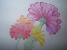 colored pencil drawing flowers mums