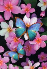 QUALITY CANVAS ART PRINT * PINK FRANGIPANIS & BLUE BUTTERFLIES