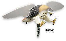 Huntwise Hw4310 Mojo Hawk Motorized Decoy 14888