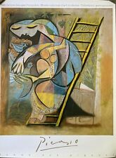 Original Vintage Picasso French Museum Poster, 1988
