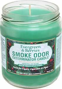 Smoke Odor Exterminator Candle, Evergreen & Berries 13 oz (3-Pack)