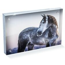 """Grey Andalusian Horse Photo Block 6 x 4"""" - Desk Art Office Gift #12472"""