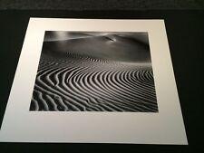 Bruce Barnbaum silver gelatin photograph Elegant Dune MINT Free Shipping 20x24