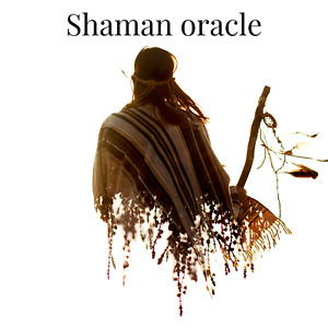 Shamans Oracle Tarot reading (written and sent via email within 48hrs)