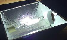 PAR-TEK LIGHTING 1000W MH 6500K HIGH FREQUENCY Digital Lamp Metal Halide Bulb