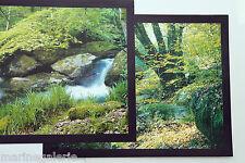 Bretagne zen vert celtique Huelgoat 2 mini posters photo décoration à encadrer