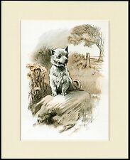 WESTIE WEST HIGHLAND WHITE TERRIER PRINT DOG SAT ON A ROCK READY TO FRAME
