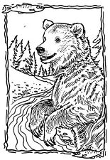 Unmounted Rubber Stamps, Alaska, Wildlife, Grizzly Bear, Bears, Scenic , Animals