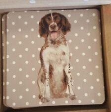 Dog lovers gift Springer Spaniel Coaster