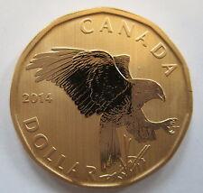 2014 CANADA $1 FERRUGINOUS HAWK SPECIMEN DOLLAR COIN
