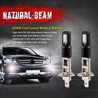 2X H1 100W LED Fog DRL Driving Lights Car Head Light Lamp Bulbs White Error Free