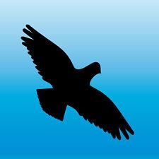 Warnvogel Aufkleber 13cm schwarz Habicht Vogel Schreck Fenster Schutz Deko Folie