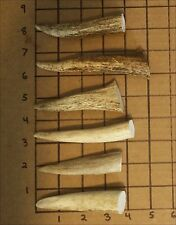 "2 Pounds Of 3""-5"" Elk And Deer Antler Tips-Dog Chews, Crafts, & Jewelry"