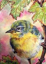 Northern Parula Warbler  Bird  O/E Print ACEO by Vicki