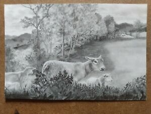 "4X6 ORIGINAL ""SHEEP GRAZING"" RKS Art studios GRAPHITE DRAWING FARM ANIMAL FIELDS"