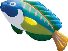"""Peacock Wrasse Large 96"""" Long - Special Line Laundry Windsock ..100.....PR 45984"""