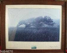 "Framed 1988 REAGAN BRADSHAW - TEXAS HEARTLAND, SPIRIT Print - SIGNED 24"" X 30"" 2"