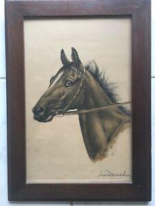 Léon DANCHIN  gravure sur cuivre tête de cheval signée crayon  très bon état