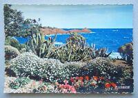 Reflets De La Cote D'Azur Sur les bords de la Grande Bleue Postcard (P222)