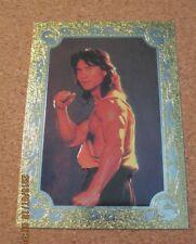 Mortal Kombat Foil Frame Chase #W 1 Liu Kang - 1995 Skybox                   ZN0