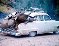 ANTIQUE REPRINT 8X10 PHOTOGRAPH ELK HUNTING > OVERLOADED CAR > VERY COOL >> LOOK