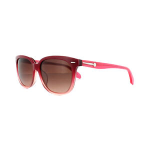 Calvin Klein Sunglasses CK4215 234 Rose Pink Fade Brown Gradient