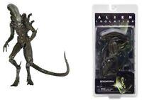 "NECA Alien Isolation Action Figure Series 6 Xenomorph 9 "" Action Figure"