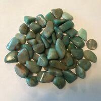 Amazonite - Tumbled and Highly Polished - 1/2 Pound Lots ~ (40) Gemstones