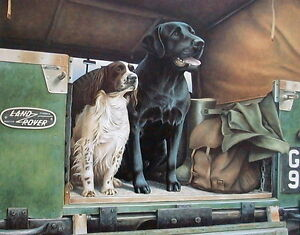 Nigel Hemming THREE ROVERS Springer Spaniel Black Labrador Land Rover Labs Dogs