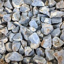 Angelite (1 lb) Raw Blue Rough Stones Tumbling Chakra Anhydrite Natural Healing