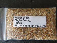 Florida Flagler Beach Sand Sample
