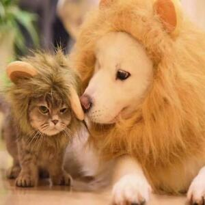 Large Dog COSPLAY Lion hat Costumes Cute Lion Mane Wig Head Warm Hat