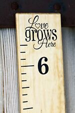 DIY Vinyl Growth Chart Ruler Decal Kit - Large # style, Love Grows Here