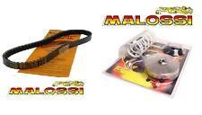 Variateur MALOSSI + Courroie YAMAHA X-Max 125 Xmax MBK Skycruiser Evolis NEUF