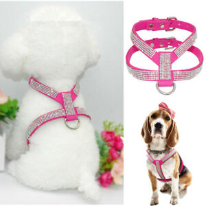 XXS/XS Teacup Chihuahua Dog Harness Small Soft Vest Leather for Maltese Shih Tzu