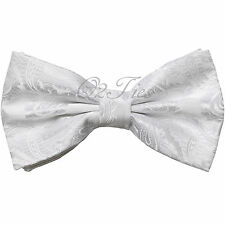 Men's Pre-Tied Butterfly Bow Tie Paisley Microfiber Bowtie Only BT600
