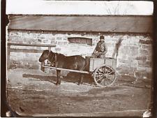 J.X. Raoult, Russie, un charretier de Tchernogov et sa mule Vintage silver  prin