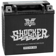 Shocker AGM Glass Mat Gel Battery YTX14 Harley 02-07 V-Rod V Rod OEM 65948-00