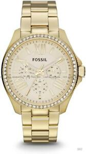 Fossil AM4482 Women Cecile Multifunction Goldtone Watch