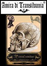 Old maps Tarot of Medicine, anatomy, surgery N°2 старые карты медицины, анатомии