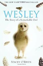 Wesley: The Story of a Remarkable Owl-Stacey O'Brien