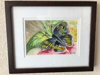 Kathy Nichols Signed Original Watercolor Painting  Peacock Butterfly ART Framed