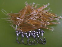 20x +10 JIG HEAD Soft plastic Bass Yabbie Prawn Shrimp BREAM Lure 50mm