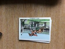 G9b Trade Card Anglo American The Horse No 57 red admiral