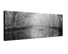 150x50cm Panoramabild Schwarz Weiss - nebliges Moor Sumpf düstere Stimmung