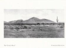 "*Postcard-""The Camel's Back"" /aka...*Camelback Mts./*Arizona  (A40-1)"
