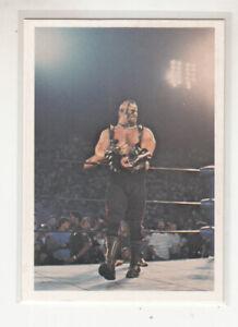 ROAD WARRIOR ANIMAL 1988 Wonderama NWA Wrestling Supercards Test Market Run #82
